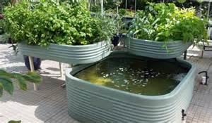 backyard aquaponics kits aquaponics family kit with corrugated tray