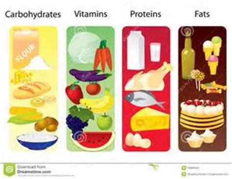healthy fats proteins and carbs living healthy macronutrients carbohydrates