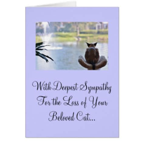 pet sympathy card template cat sympathy cards photocards invitations more