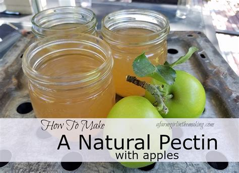 fruit pectin fruit pectin a farm in the