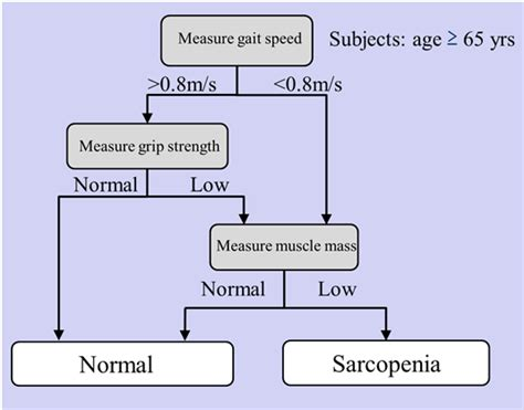icd 9 code osteoporosis figure 1 recommended algorithm for diagnosing sarcopenia