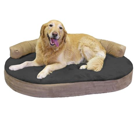 dog bolster bed best dog beds how to choose woofwise