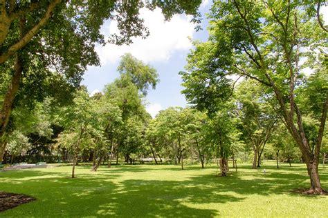 Garden Of Park Free Photo Garden Parks View Ya Japan Park Free