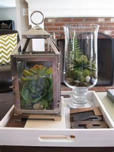 Terrarium Coffee Table A Succulent Terrarium In A Lantern This Is A Great Use For Some Of My Wedding Lanterns