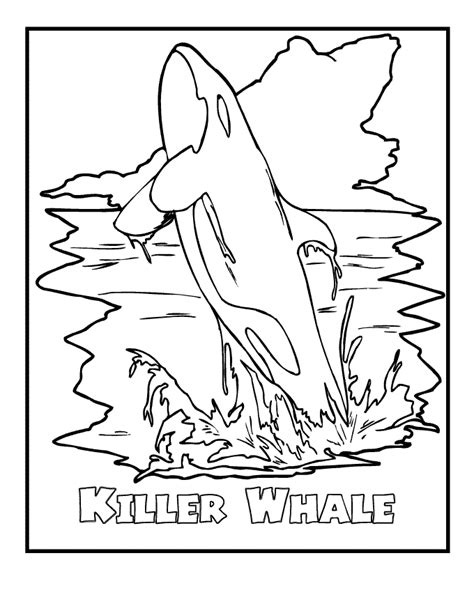 coloring pages of endangered animals humpback whale color coloring home