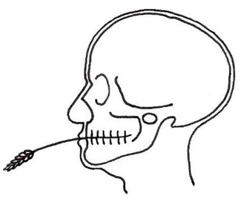 imagenes para colorear de rayos x rayos x de cabeza para pintar y colorear colorear