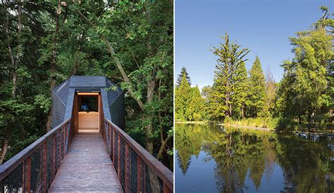 Cabin In The Pines portugal s cabins in the pines azure magazine