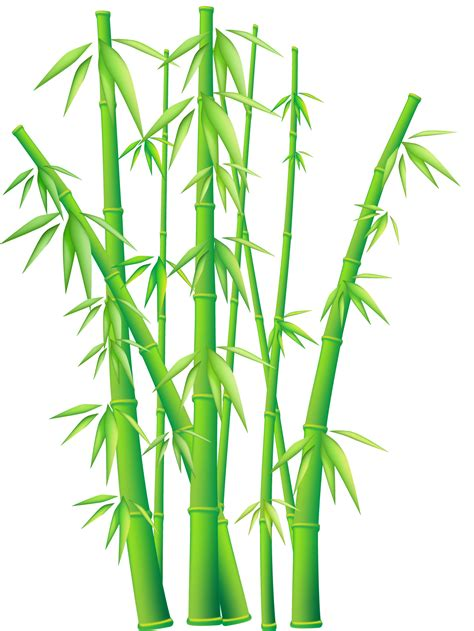 free downloadable clipart bamboo border free clipart best