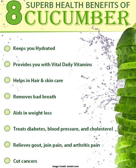 benefits of cucumber 17 surprising health benefits of cucumber you may have