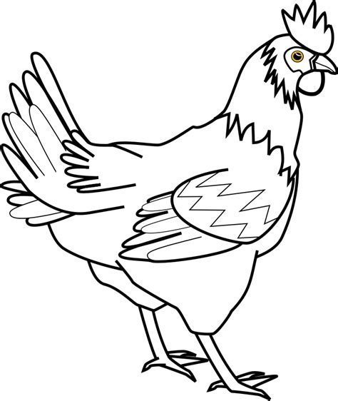 chicken drawing outline at getdrawings com free for personal use chicken clipart black and white clipart panda free