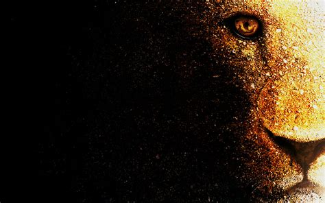 wallpaper black deviantart lion wallpaper desktop by mu6 on deviantart