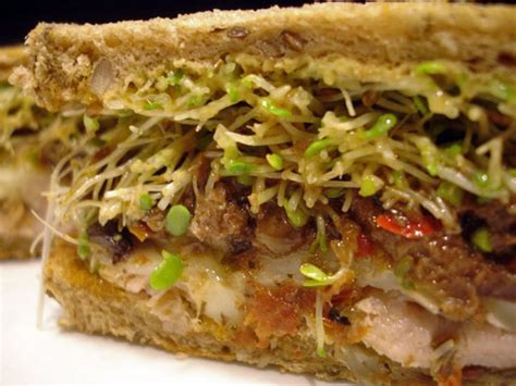 Wich Of The Week Mediterranean Tuna Melt by Recipe For Olive And Roasted Ahi Tuna Melt Popsugar Food