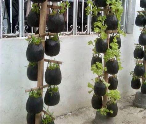 gambar desain vertikultur vertical garden cara bercocok tanam dengan teknik