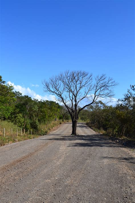 costa rica turisti per caso parco national rincon de la vieja viaggi vacanze e