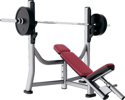 assisted bench press assisted bench press bar weight 28 images bodytrain xe