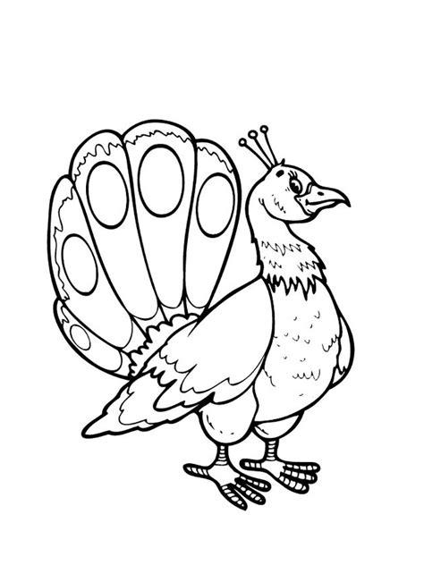 Mewarnai Gambar Burung Merak Untuk Anak