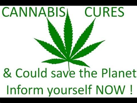 cbd hemp the secret cure of the human books cannabis hemp cures cancer