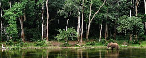 fesyen pakaian di brazzavelle afrika le foreste congo