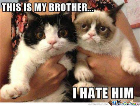 love  brother  bevamp meme center