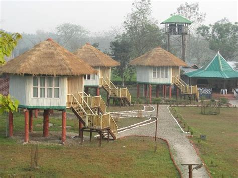 forest bungalows picture of gorumara forest west bengal - Forest Bungalow In West Bengal