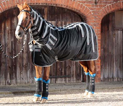 magnetic rug for horses bi polar magnetic rug with neck cover