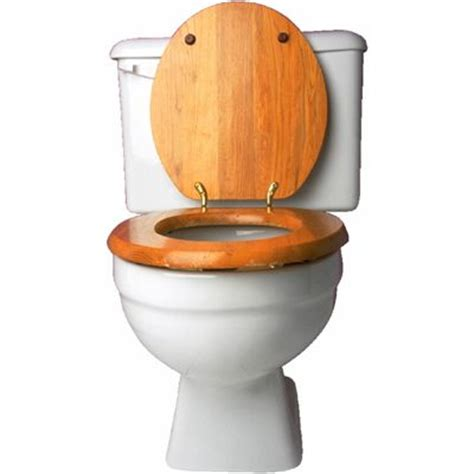 bidet origin toilet meaning of toilet in longman dictionary of
