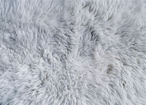 fur rug white fur rug texture pattern pictures
