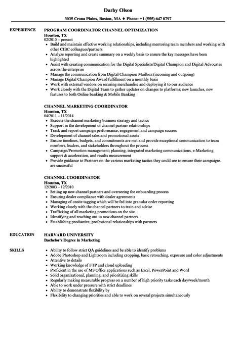 28+ [bim manager resume]