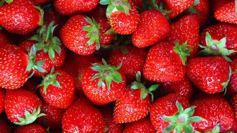 Home Design Tv Shows 2016 by Strawberries Linked To Multistate Hepatitis A Outbreak Cnn