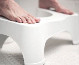 1000 ideas about squatty potty on wedge