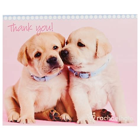 you puppy rachaelhale dogs thank you notes 8 birthdayexpress