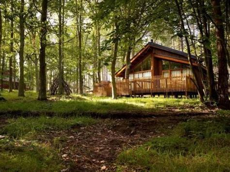 forest holidays forest cabin picture of forest