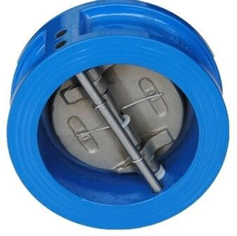 5 Wafer Check Valve Cast Iron Pn 16 door swing check valve wafer 80mm cast iron