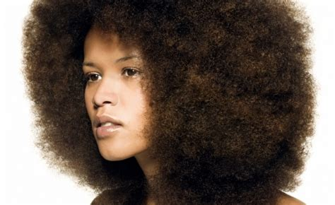 plaitted african caribbean hair diy intensive conditioning treatment for black afro