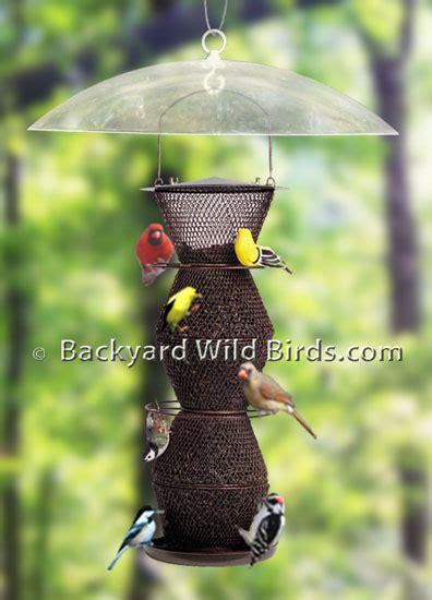 squirrel proof bird feeder designs at backyard birds