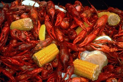 cajun traditions lafayette high school students are being challenged with