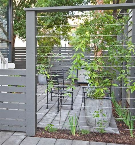 wire supports for climbing plants cable wires mounted between fence posts create a sturdy