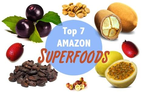 amazon cooking top 7 amazon superfoods rainforest cruises