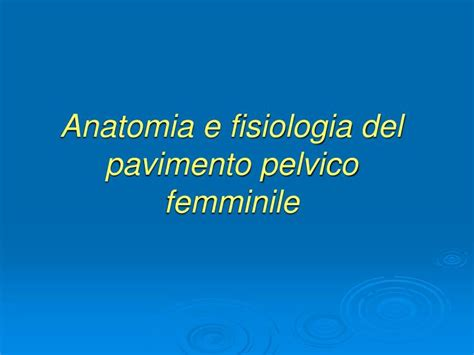 pavimento pelvico femminile ppt prolasso urogenitale powerpoint presentation id