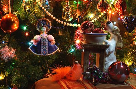 new year christmas tree christmas decorations star dog