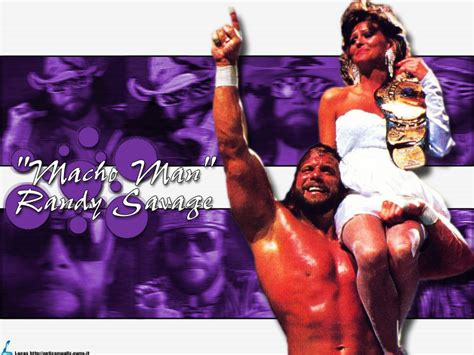 classic wwf wallpaper coby s blog wallpapers of wwf