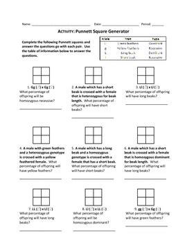 Punnett Square Worksheet by Punnett Square Generator Worksheet By Haney Science