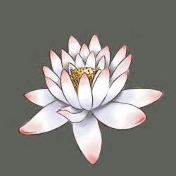 How To Draw A Lotus Flower Draw A Lotus Flower Tes Mosaics And Mosaic Projects