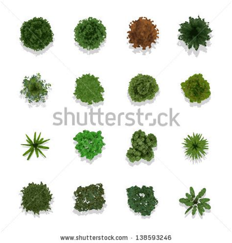 Landscaping Tips And Tricks Tree Stock Photos Royalty Free Images Amp Vectors