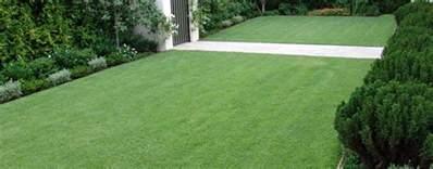 Types Of Garden Edging - empire zoysia turf grass of the future