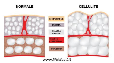 cellulite e alimentazione cellulite come combatterla con l alimentazione is food