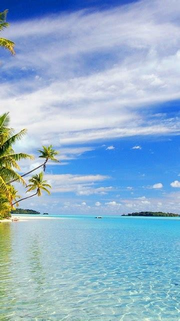 beach nice background wallpapers windows  wallpapers