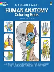 booktopia human anatomy coloring book an entertaining
