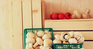 calorie degli alimenti dalla a alla z alimenti dalla a alla z nutrizione melarossa