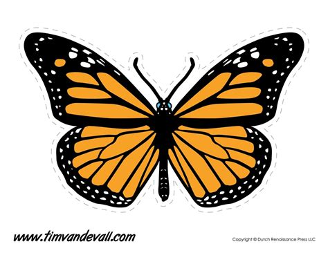 monarch butterfly template printable monarch butterfly template printable larissanaestrada